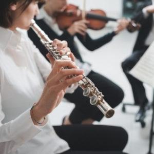Nivel 2 - Familia de instrumentos